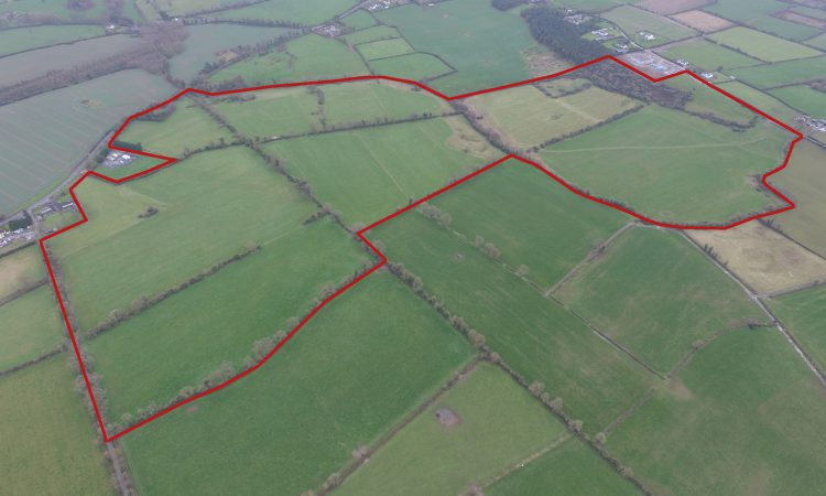 'Attractive' derelict property on 130ac suitable for many agri enterprises