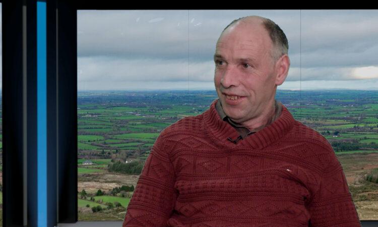 'Dog chipping must be made compulsory' – ICSA sheep chairman