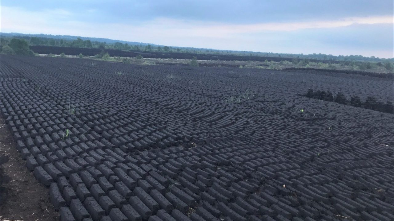 Almost 70% of peat bogs located along western seaboard – CSO