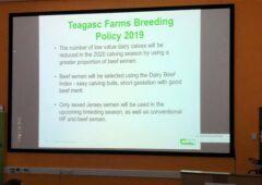 TEGASC概述了其在2019年繁殖季节向奶农传达的信息。金宝搏娱乐城