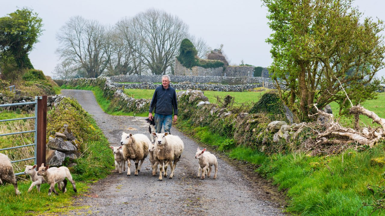 Closing date approaching for farming for nature award