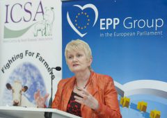 Calleary must 'continue the convergence of BPS in the next round of CAP' – Harkin