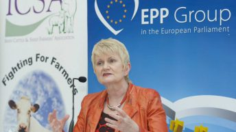Government disregard of the west 'an issue of serious concern' – Harkin