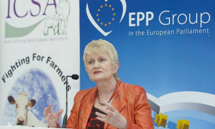 Harkin not to contest European elections