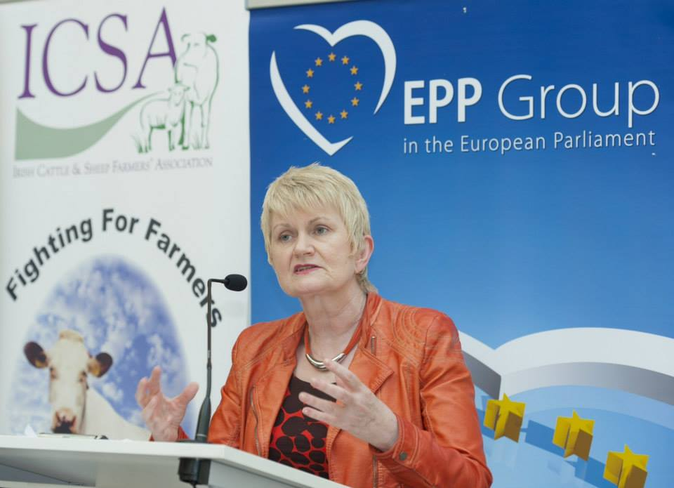 Agriculture minister gives assurances to farmers affected by Leitrim landslide