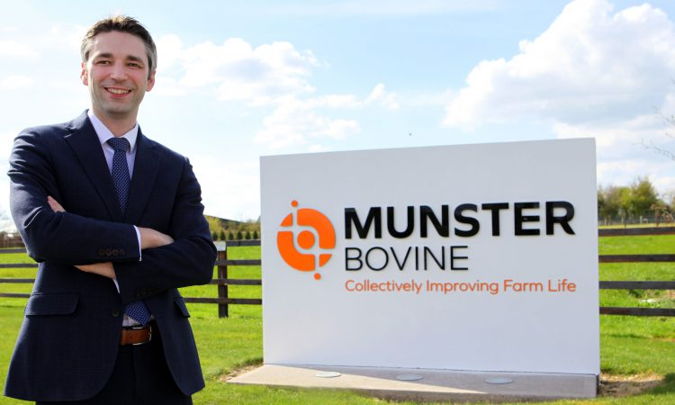 What's in a name: Munster Bovine unveiled following brand revamp