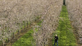 From farming in Saudi Arabia to cider making in South Tipp