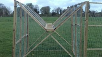 Video: Man builds crow trap to combat bird attacks on lambs