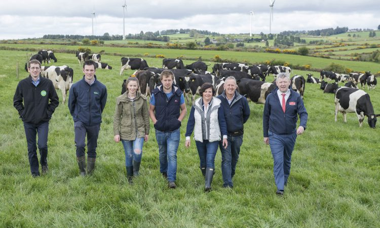 LESS is more: Secrets to success for 'Green' dairy farmers