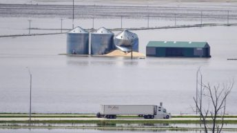 Grain price: Extreme weather in US continues to lead markets