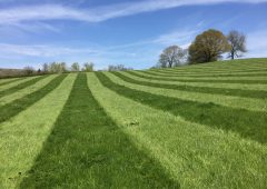 Corteva to use scale and expertise to deliver cutting-edge solutions for farmers