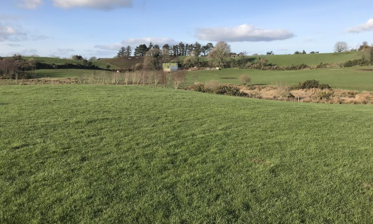 56ac holding for sale in scenic Screen, Co. Wexford