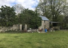 Hacketstown roadside holding with derelict house for sale