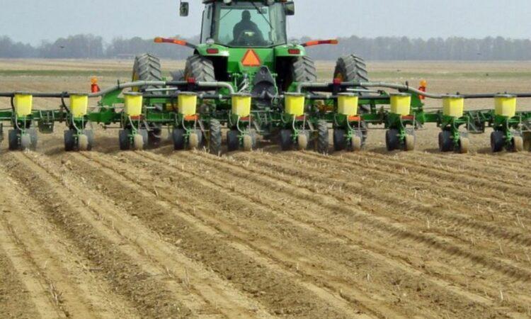 Grain price: Crop reports generally 'good' around the globe