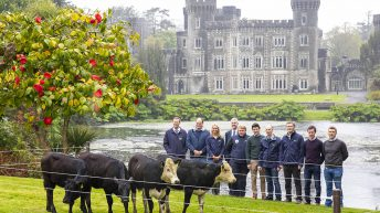 'Advancing knowledge for an evolving industry' – theme of DairyBEEF2019