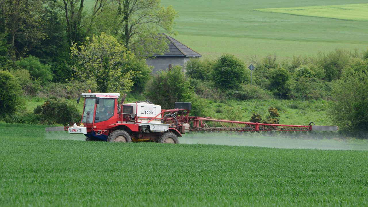 Wheat and barley fungicides all due in the coming days