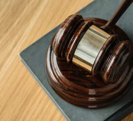 Co. Down fisherman fined for sowing uncultivated land