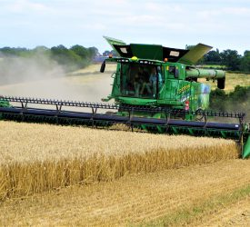 Companion crops make positive difference on Louth tillage farm