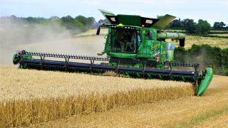 伴生作物对旱作农田有显著影响狗威体育app