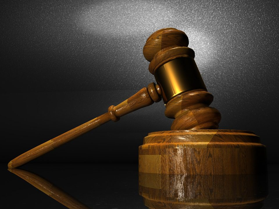 Man sent for trial in alleged assault case over animal dispute