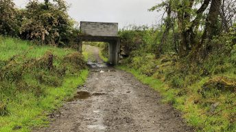 Infrastructure focus: 'A cheap and cheerful underpass' in Co. Cavan