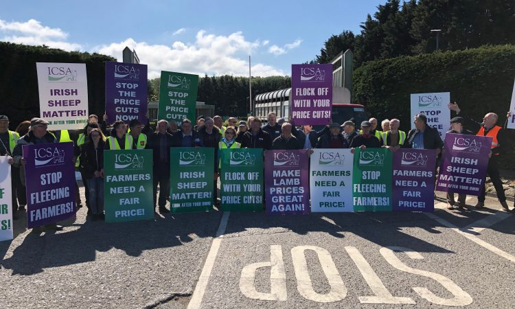 'You don't know where or when but we could strike again' – ICSA sheep protest