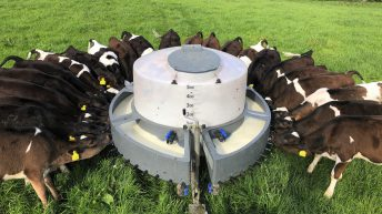 Farmers urged to avoid feeding waste milk to calves