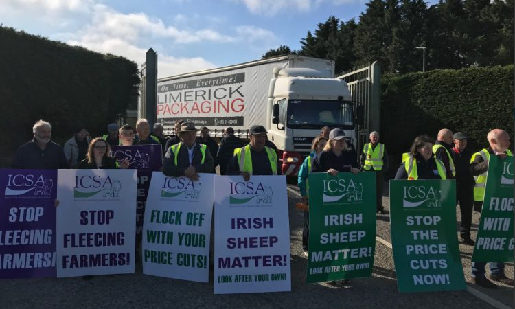 ICSA Sheep Committee stages protest on 'savage price cuts'
