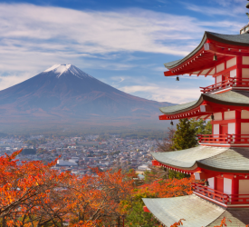 Improved market access to Japan for Irish beef confirmed