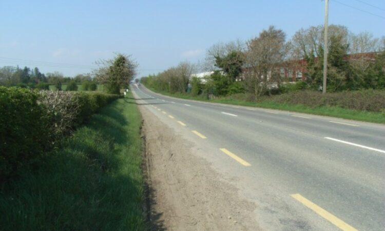 Gardaí seek owner of loose cattle on road causing crash