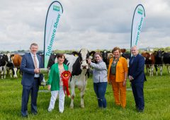 Monday closing date for exhibitors as Tullamore Show launched