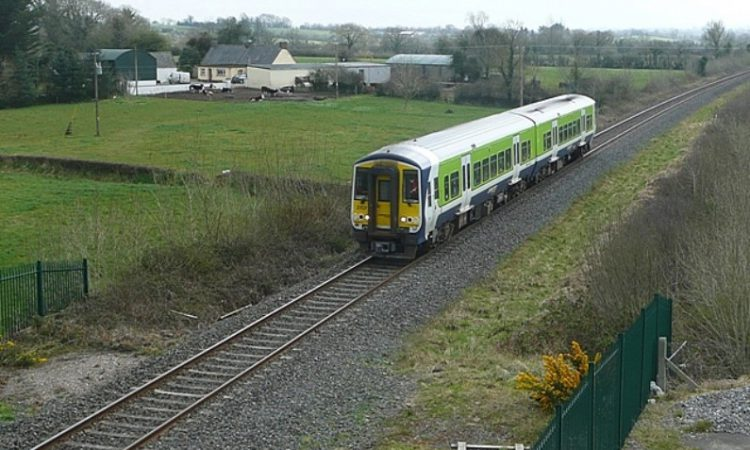 Trains delayed with blocked route due to cattle on line