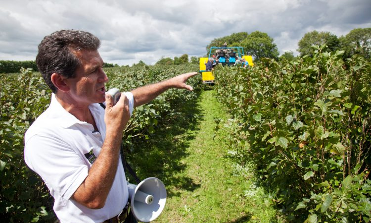 Good Food Ireland Experiences drives farm tourism