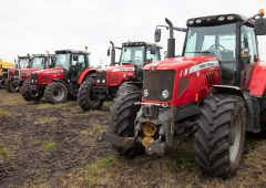 Auction report: On-farm sale sees a fleet of MFs change hands