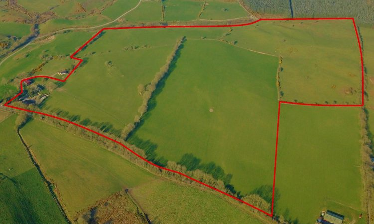 Kilbaylet land 'suited to all types of farming' for sale in lots