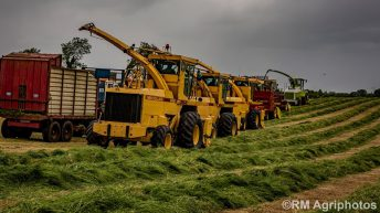 Classic silage harvesting convoy out in force…in the north-east