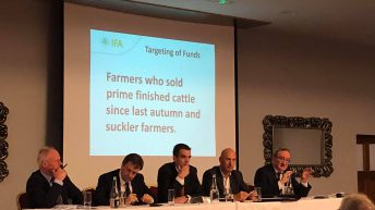 Reference dates for €100 million beef support fund submission explained