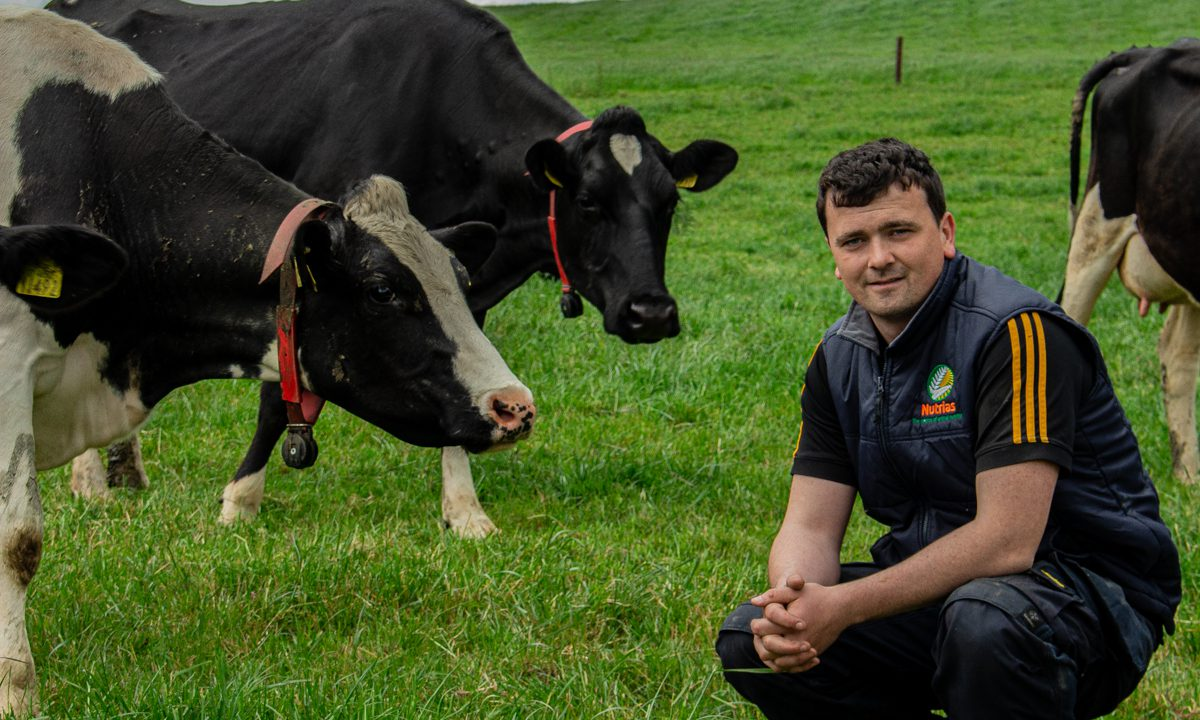 Young dairy farmer set to lose 14ac to new N5 route in Co. Roscommon