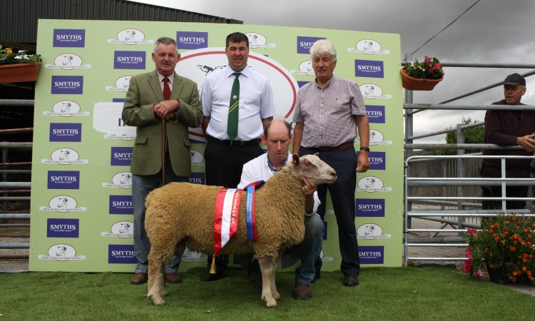 Charollais Sheep Society in central move for premier show