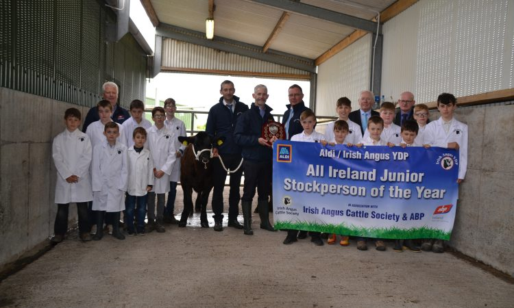 'All Ireland junior stockperson' competition opens for entries