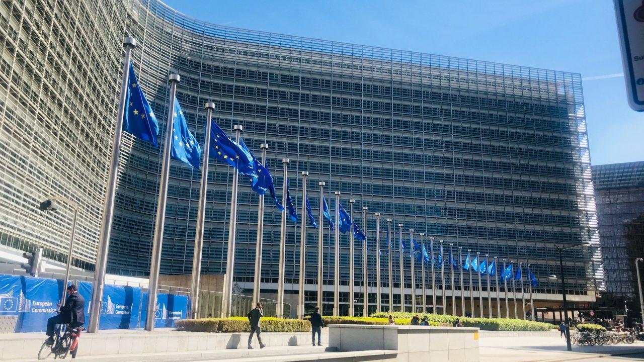 Mercosur trade deal a 'confirmation of EU hypocrisy' – INHFA