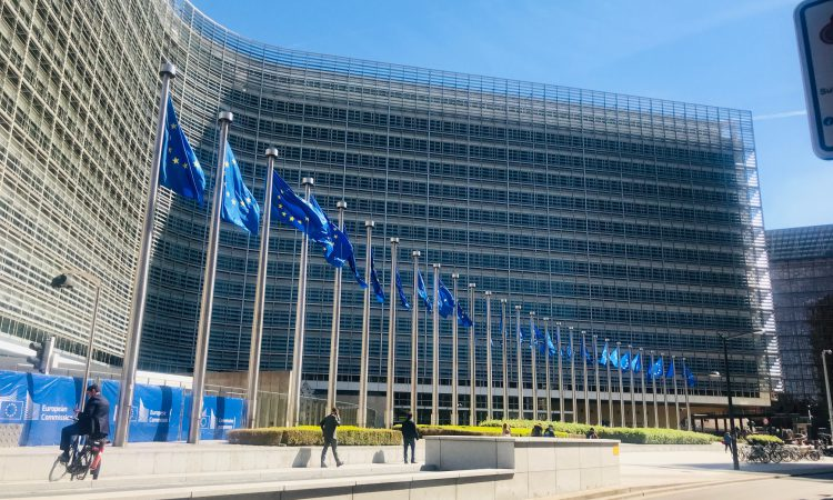 Read in full: EU beef fund draft regulation sent to member states