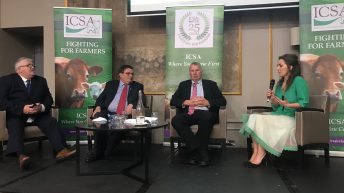 New ICSA president announced