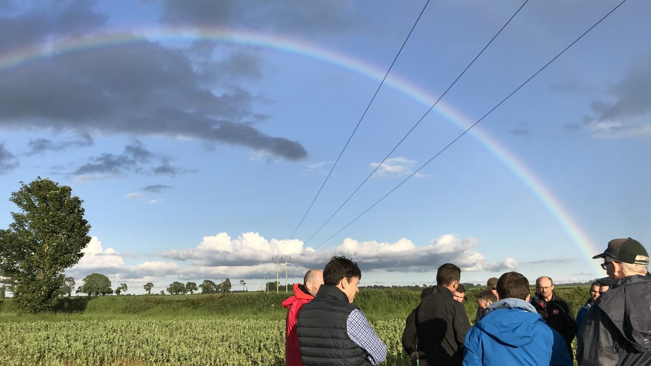 Tillage focus: Conserving the soil and time in Co. Carlow
