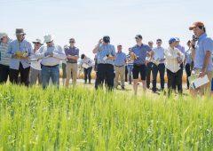 6月……一个月的时间,见证耕作领域的新进展。188betapp