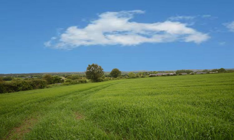 10ac lands in Co. Wexford enjoy coastal and mountain views