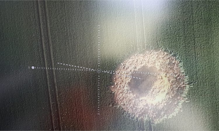 World War II bomb explodes in field – leaving 10m crater
