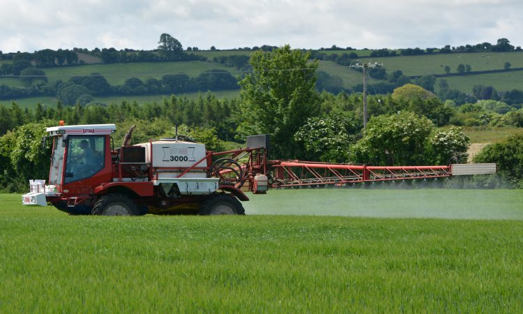 Rain will push spring barley to final fungicide timing