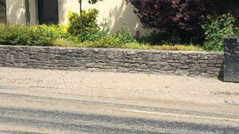 'Large deposits of animal waste' found on street