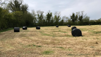 Green Acres: Harvesting first-cut silage and taking out surplus paddocks